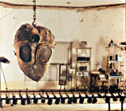 Le Coeur de la Machine